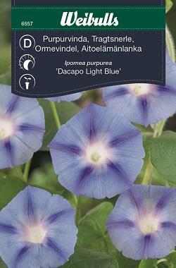 Vinda Purpur- 'Dacapo Light Blue'