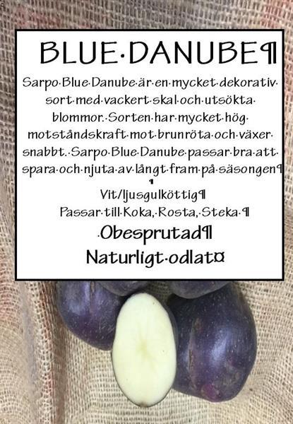Potatis TVÄTTAD Blue Danube 1kg