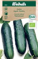 Gurka 'Marketmore' Krav Organic
