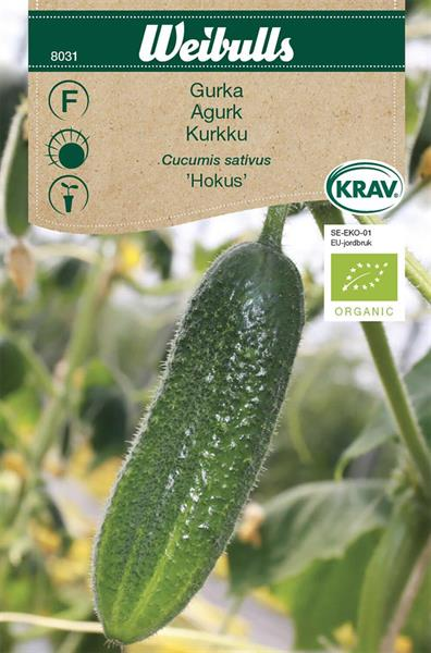 Gurka 'Hokus' KRAV Organic