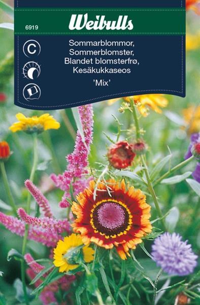 Mix Sommarblommor