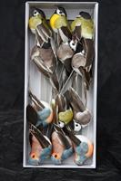 Fåglar svenskmix 8 cm långa 12/fp