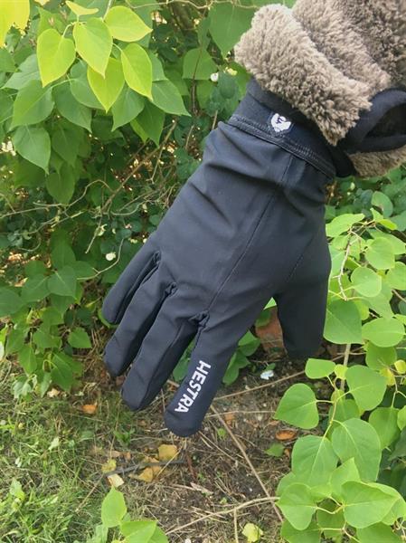 Hestra Nimbus Glove