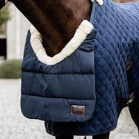 Horse BIB winter