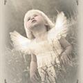 """Postkort """"Engel i enga"""""""