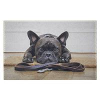 Dörrmatta fransk bulldog