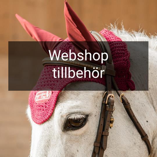 Equipe webshop tillbehör