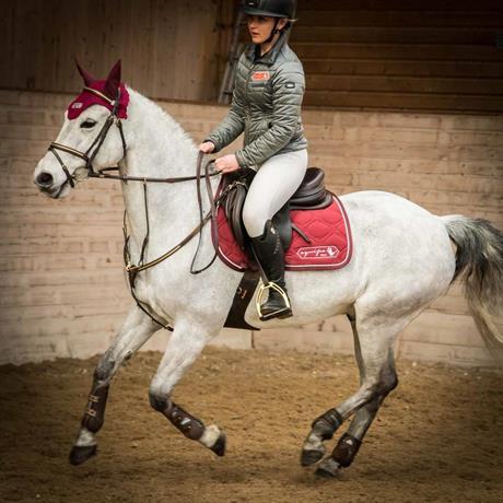 Samspel mellan häst och ryttare