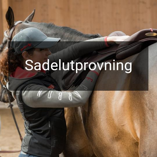Sadelutprovning Equipe Sadel