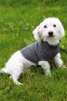 Hund tröja Grå