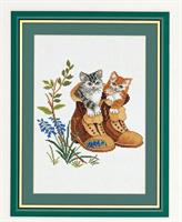 Kattungar i känger