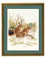 3 Kaniner