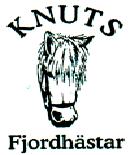 Knuts Fjordhästar