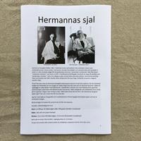 Hermannas sjal stickbeskrivning