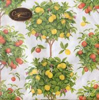 Lunsjservietter Citrus white, 3 lags 20stk