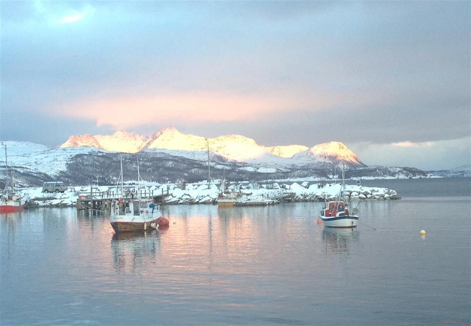 Havna i Sørkjosen