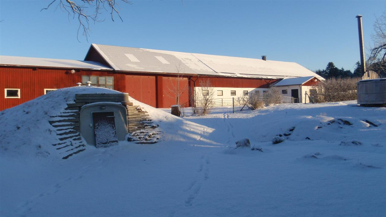 Vinterdag i januari