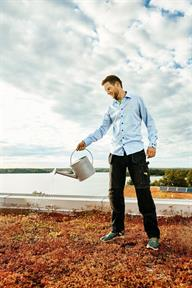 Olof - vd och projekt-/arbetsledare. Favoritväxt på tak: gräslök och knippnejlika.