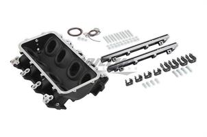 BASE IM & FUEL RAILS, LS1 LO-RAM, BLACK