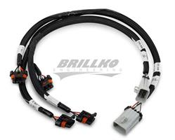 LSx MAIN TO HOLLEY COILS HARNESS KIT