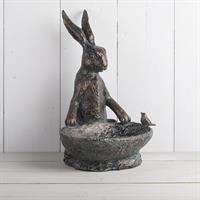 Hare med fågelbad