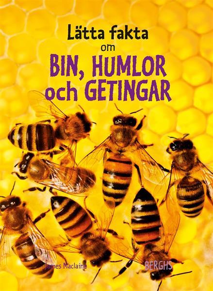 Lätta fakta om bin, humlor och getingar