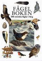 Fågelboken 200 svenska fåglar