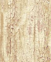 Kontaktplast Tree Shell