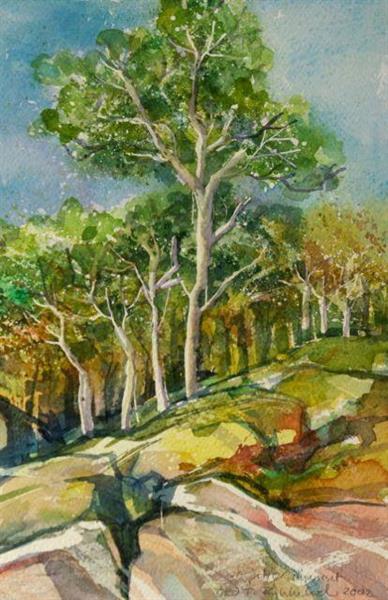 Ospetrær på kysten