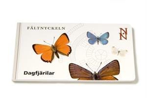 Fältnyckel - Dagfjärilar