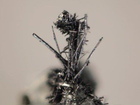 Close up of the new mineral merelaniite