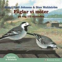 Fåglar vi möter ......