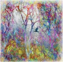 Liz Ravn - Magical forest