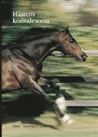 Hästens Konvalescens