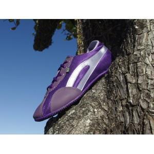 Munsell Purple / Lilac