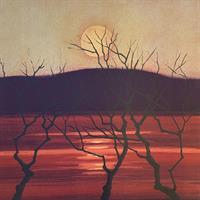 Eva Harr- Tegn mot midnatt