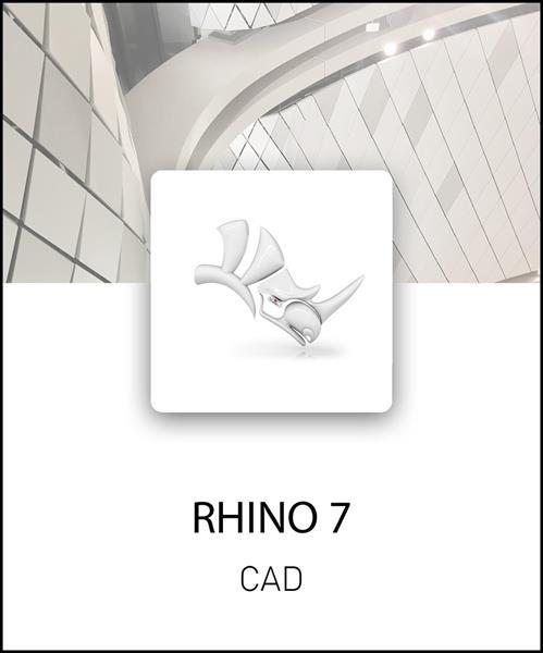 Rhino 7