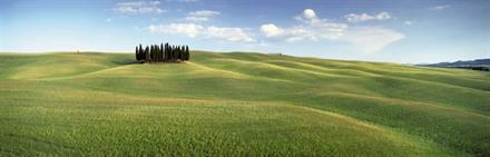 Komar fototapet Tuscany