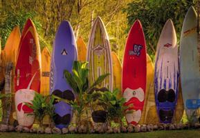 Komar fototapet Maui