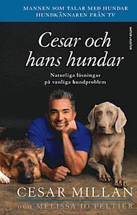 Cesar och hans hundar po