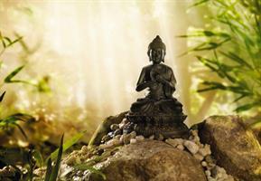 Komar fototapet Budda