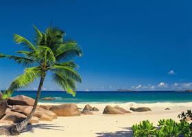 Komar fototapet Seychellen