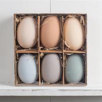 Ägg med hänge, sorterade färger, 6-pack