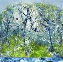 Liz Ravn - Forest of spring