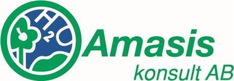 Amasis konsult AB