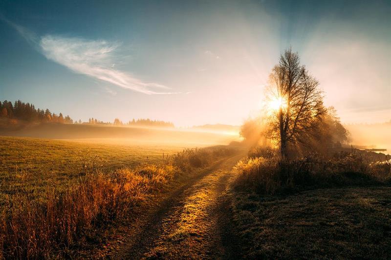 Martynas Milkevicius-Memories of autumn