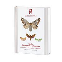 Fjärilar Ädelspinnare