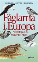 Fåglarna i Europa uppl.6:1
