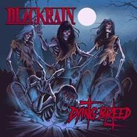 BLACKRAIN-Dying Breed(LTD)