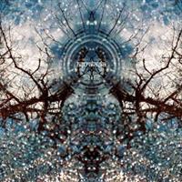 Astralasia-A Coloured In Dream